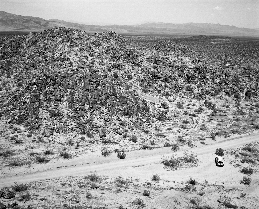 Joshua Tree Triptych Middle Panel