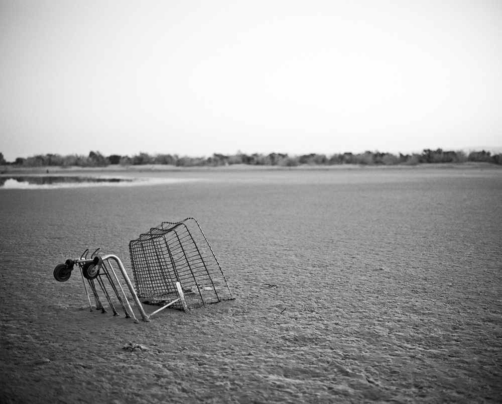 Salton Sea Shopping Cart