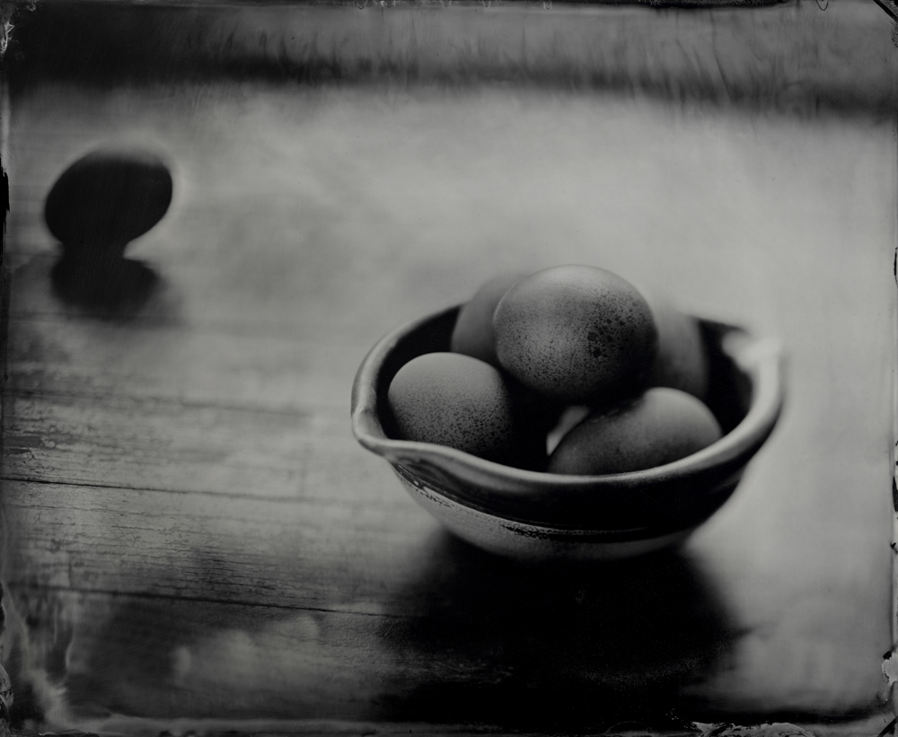 Speckled Eggs - Tintype Photograph