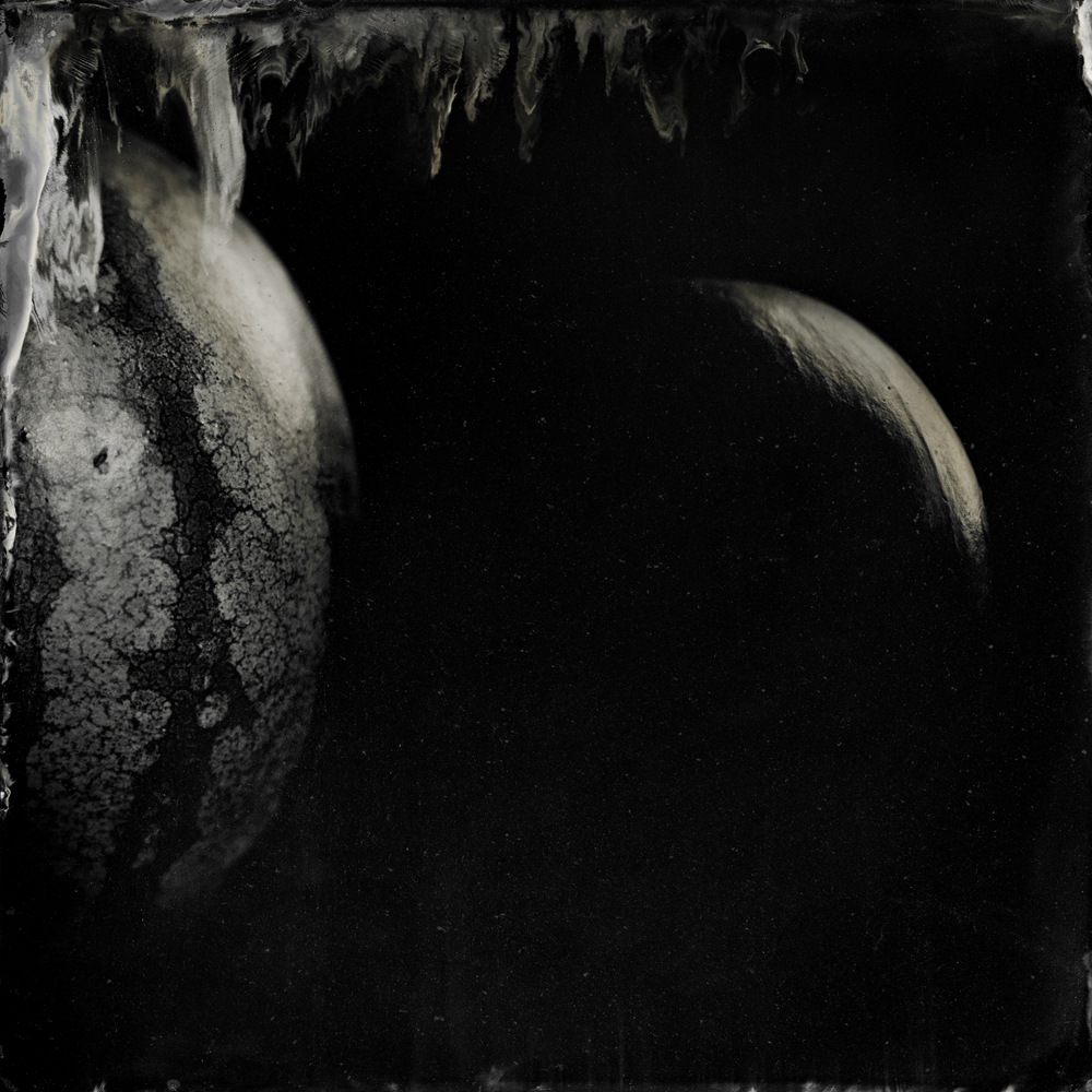 Moon Melon - Tintype Photograph